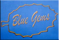 Blue Gems Minerals & Jewellery